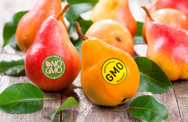 How Do You Know If Your Food Is Gmo Free