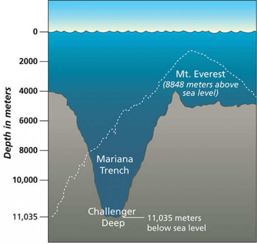 How Polluted Is The Mariana Trench? | Youngzine
