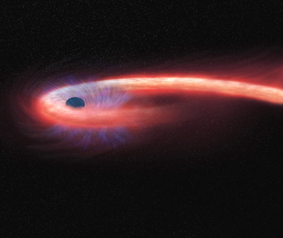 Star flung out of black hole
