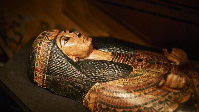 The mummy coffin