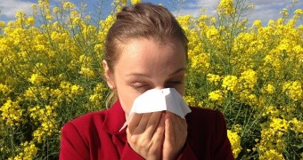 Sneezing from Allergies